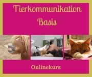 Onlinekurse für Tiermemschen Tierkommunikation lernen