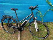Pegasus Solero 8 E Bike