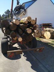 Brennholz Transport und Service