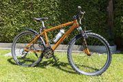 Puch Mountainbike Magnesium-Rahmen