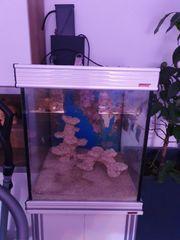 Aquarium Meerwasser Deltec MCE 400