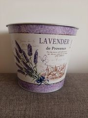 Lavendel Topf