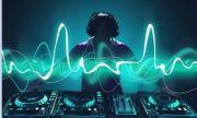 DJ für Hochzeit Weihnachtsfeier Geburtstag