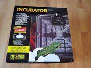 Exo Terra Inkubator Pro