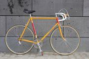 Rennrad Klassiker Colnago Bianchi Merckx