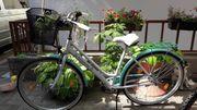 Nagelneues Citybike