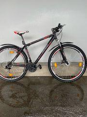 AVIGO -Fahrrad Mountainbike 29 Zoll