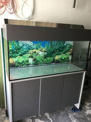 Aquarium mit Unterschrank 240 l