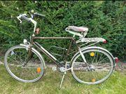 Herren Leichtsport-Fahrrad von Fendt Swinger