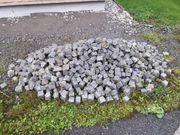 Granit Kopfsteinpflaster