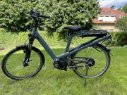E-Bike Riese Müller Culture Fahrrad