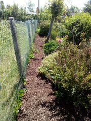 Gartenarbeiten Befreien sie ihren Garten