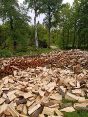 Brennholz-Kaminholz