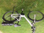 E Bike Tiefeinstieg Rücktrittbremse