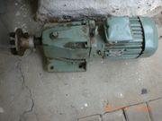 Getriebe Motor