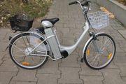 Elektro-Scooter City 250W