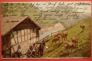 AK historisch Schweizer Alm 1902