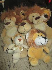 Stofftiere Löwen