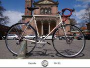 Gazelle Rennrad für große Personen