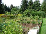 Suche Gartengrundstück in Heppenheim Umgebung