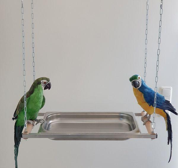 Papageien BADEWANNE XXL Edelstahl für alle PAPAGEIEN Vögel NEU