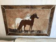 Pferdebild Pferdefell Pferde Wandbild 120x80cm