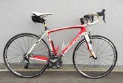 Rennrad Spezialiced Roubaix Comp