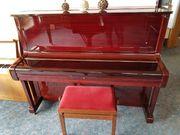 glänzendes Bertus piano