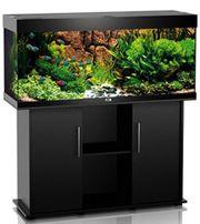 Aquarium Juwel 240l Komplettpaket