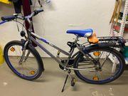Damen-Fahrrad Winora