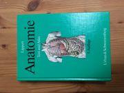 Anatomie - Lippert 5 Auflage
