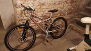 Fahrrad 26 Zoll Marke Bellini