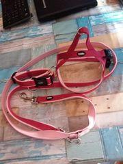 Neuwertig Nobby Preno Norwegergeschirr Halsband