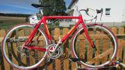 Rennrad Vollcarbon RH 54 cm