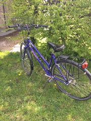 Damenrad Giant 28 zu verkaufen