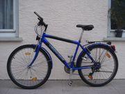 Herrenrad blau schwarz