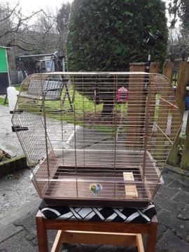 Vögel - Käfig