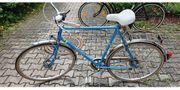 28 Zoll Pegasus Robin Fahrrad