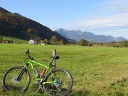 eBike E-Mountainbike E-MTB STEINBOCK 29