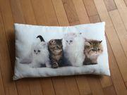Katzenkissen zu verschenken 48 x