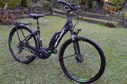 Centurion e-Bike Pedelec Tiefeinsteiger Trecking-Rad