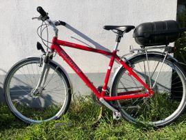 Campus Herrenrad Herrenfahrrad Trekkingrad Herrentrekkingrad: Kleinanzeigen aus Gommersheim Kindelsbrunnerhof - Rubrik Herren-Fahrräder