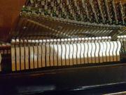 Klangschönes Klavier mit neuen Filzen
