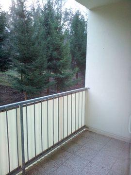 Vermietung 2-Zimmer-Wohnungen - 2Zi Whg mit Balkon in