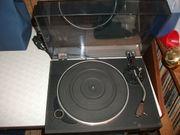 Schallplattensammlung Plattenspieler