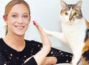 Katzensittin Katzenbetreuung