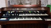 Hammond Orgel T500 - Sehr gut