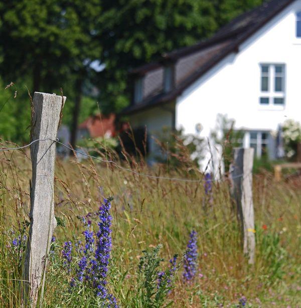 Suche Resthof Bauernhof Haus