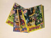 Der unglaubliche Hulk - Taschenbuch Softcover
