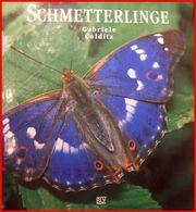 Gabriele Colditz - Schmetterlinge